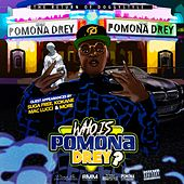 Who Is Pomona Drey? by Pomona Drey