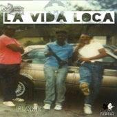 La Vida Loca by Flame