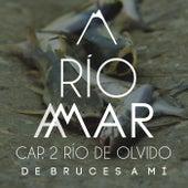Río a Mar (Cap. 2 - Río de Olvido) de De Bruces a Mí