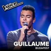 Budapest (The Voice Van Vlaanderen 2017 / Live) by Guillaume Vangu