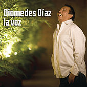 Play & Download La Voz by Diomedes Diaz | Napster
