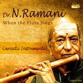 Dr. N. Ramani - When the Flute Sings by Kannan