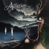 The Untamed Wilderness by Aetherian