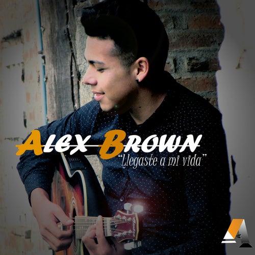 Llegaste a Mi Vida by Alex Brown