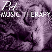 Pet Music Therapy - Zen Calmness for Home Alone Dogs and Kittens, Music for Owners by Pet Music World