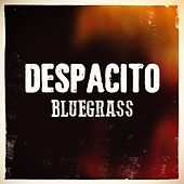 Despacito (feat. Euriamis Losada) von Chris Roberts