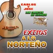 Exitos A Lo Norteno by Various Artists