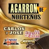 Agarron De Nortenos by Various Artists