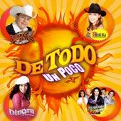De Todo Un Poco by Various Artists