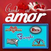 Canto Al Amor by Various Artists