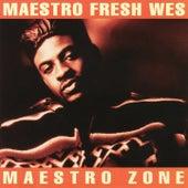 The Maestro Zone by Maestro Fresh Wes