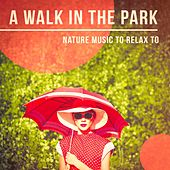 'A Walk in the Park' - Nature Music to Relax to by Various Artists