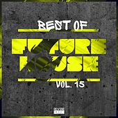 Best of Future House, Vol. 15 by Various Artists