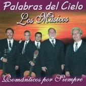 Palabras del Cielo by Los Musicos