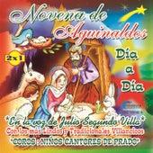 Novena de Aguinaldos by Los Ninos Cantores de Prado