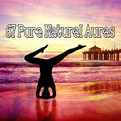 67 Pure Natural Auras by Asian Traditional Music