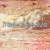 77 Soothed To Sleep Sounds by Bedtime Baby