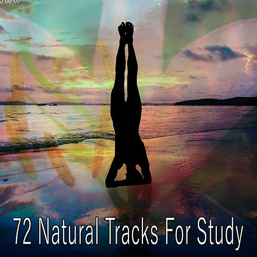 72 Natural Tracks For Study von Classical Study Music (1)