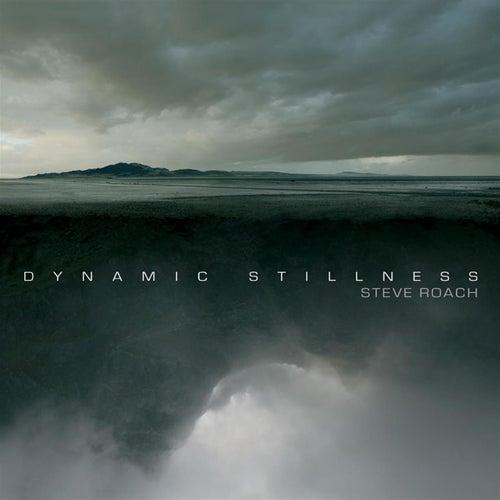 Dynamic Stillness by Steve Roach