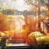 66 Mind Strengthening Tracks by Sounds of Nature Relaxation