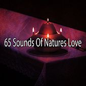 65 Sounds Of Natures Love by Yoga Music