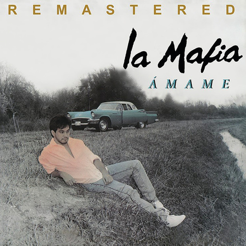 Ámame (Remastered) by La Mafia