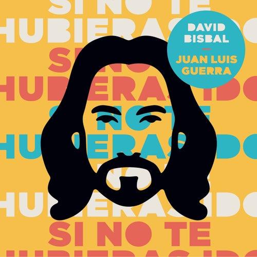 Si No Te Hubieras Ido by Juan Luis Guerra & David Bisbal
