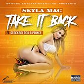 Take It Back by Skyla Mac