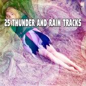 25 Thunder And Rain Tracks by Thunderstorm