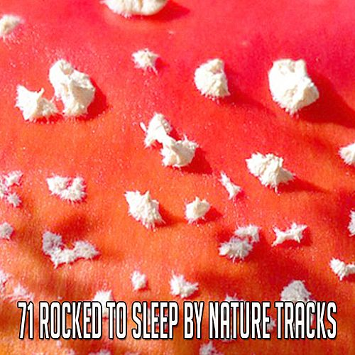 71 Rocked To Sleep By Nature Tracks by Rockabye Lullaby