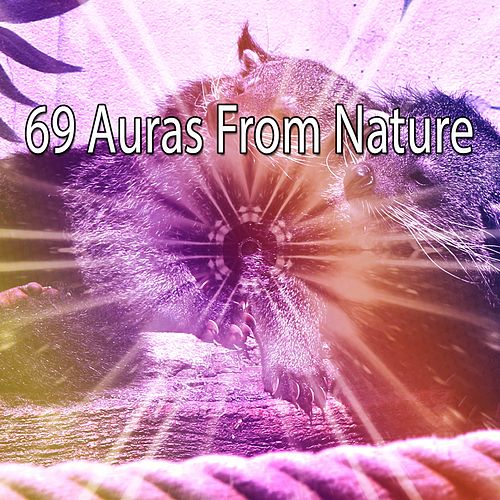 69 Auras From Nature by Sounds Of Nature