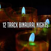 12 Track Binaural Nights by Binaural Beats Brainwave Entrainment