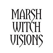 Marsh Witch Visions by The Mountain Goats