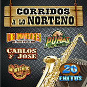 Corridos A Lo Norteno by Various Artists