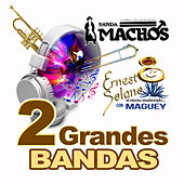 Dos Grandes Bandas by Various Artists