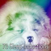 73 Sleep Inductions by Deep Sleep Relaxation