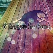 66 Therapeutic Sleep Sounds by Nature Sound Series