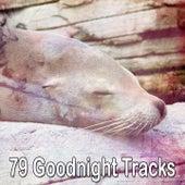 79 Goodnight Tracks de Dormir