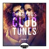 Gorgeous Club Tunes, Vol. 2 de Various Artists