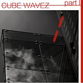 Cube Wavez, Pt. 1 by Various Artists