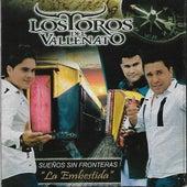 La Embestida (Sueños Sin Fronteras) by Los Toros Del Vallenato