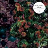 KDM (Barker & Baumecker remix) by Blondes