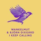 I Keep Calling by Wankelmut