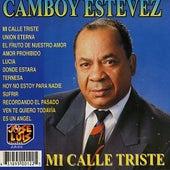 Play & Download Mi Calle Triste by Camboy Estevez | Napster