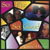 So Far so Good by Richard Mekdeci