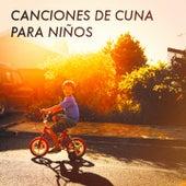 Canciones de Cuna para Niños by Various Artists