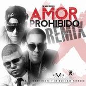 Amor Prohibido by Baby Rasta & Gringo