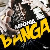 Banga by Aidonia
