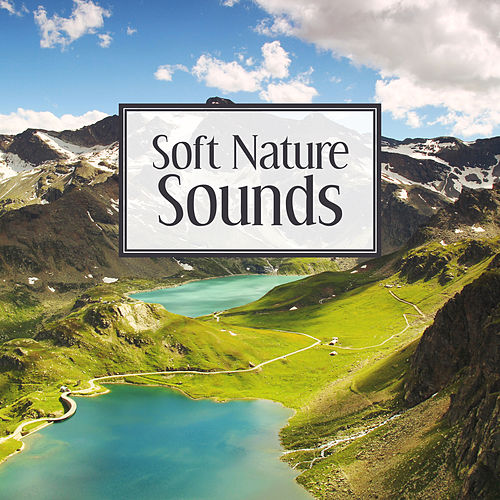Soft Nature Sounds – Easy Listening, Mind Relaxation, Healing Therapy with Nature Sounds, Music to Calm Down by Echoes of Nature