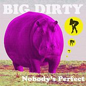 Nobody's Perfect by The Big Dirty